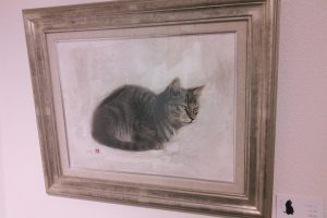 ぬく猫・さむ猫 vol.2