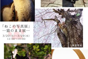3月企画展のご案内(高円寺)